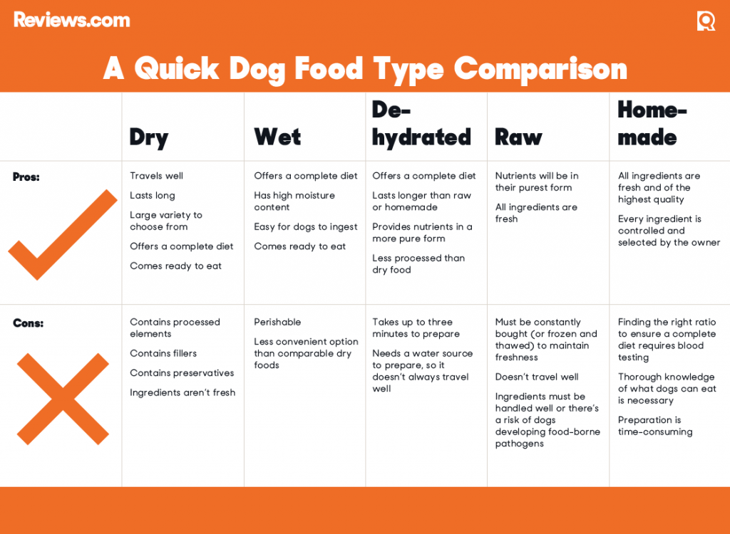 A Quick Dog Food Type Comparison