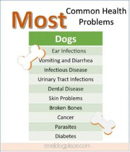 Most Common Health Problems